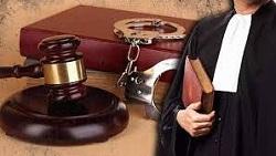 چند نوع وکیل داریم؟